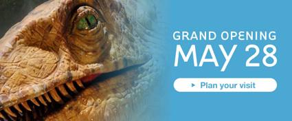 grandopening425.jpg