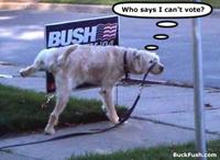 bush_dog_vote-200.jpg