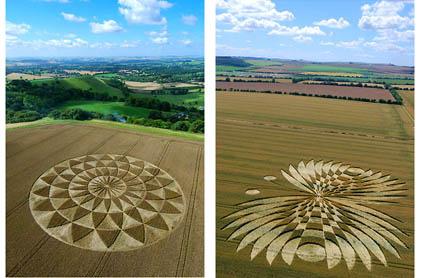 cropcircles1.jpg