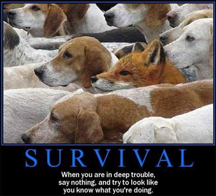 survival3266-425.jpg