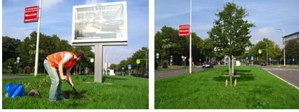 Tree in front of billboard, by Helmut Smits