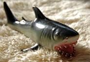 sharksm.jpg