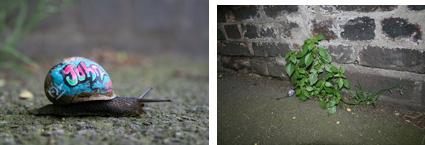 Slinkachu, Inner City Snail