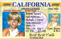 drivers-license-200