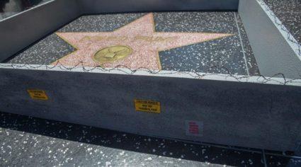 trump-star-wall1